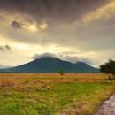 Afrika dari Pulau Jawa, Taman Nasional Baluran