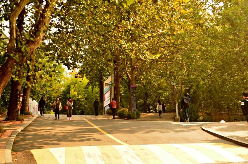 Area Hongik University
